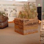 wb-incorporated-kettle-pond-visitors-center-project (1)