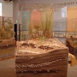wb-incorporated-kettle-pond-visitors-center-project (3)